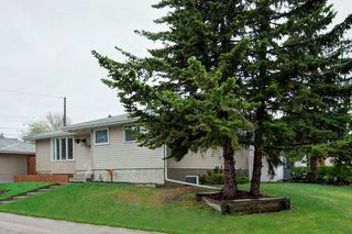 Photo 31: 527 MURPHY Place NE in Calgary: Mayland Heights Detached for sale : MLS®# C4297429