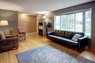 Photo 3: 527 MURPHY Place NE in Calgary: Mayland Heights Detached for sale : MLS®# C4297429