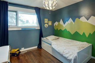 Photo 13: 527 MURPHY Place NE in Calgary: Mayland Heights Detached for sale : MLS®# C4297429