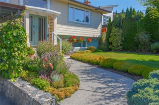 Photo 3: 1650 Alderwood St in : SE Lambrick Park House for sale (Saanich East)  : MLS®# 855020