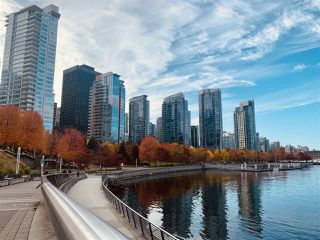 """Photo 24: 1006 1333 W GEORGIA Street in Vancouver: Coal Harbour Condo for sale in """"QUBE"""" (Vancouver West)  : MLS®# R2507933"""