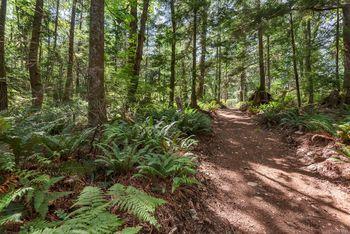 trail along back of SL 5