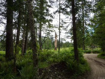 trail leading past SL 9, views of the Quadra Island Golf Club